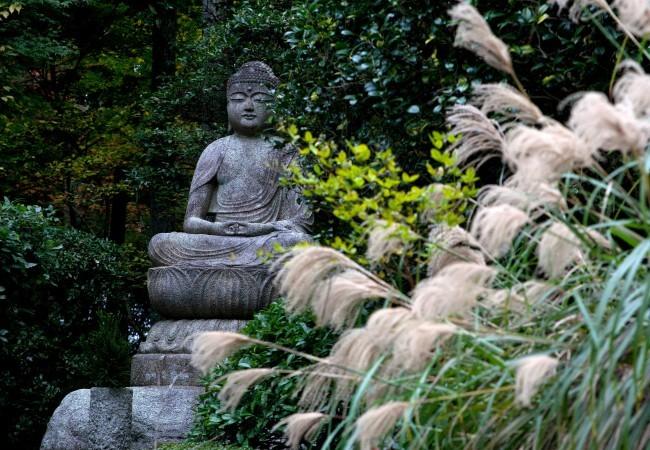 kyoto-tempio-ryoanji-statua-buddha