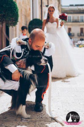 www.weddingdogsitter.com-matrimonio-con-il-cane-bari-bordie-collie-91