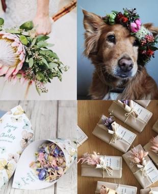 Idee per il matrimonio 2020: ecco le 150 foto che devi assolutamente vedere prima del Sì!