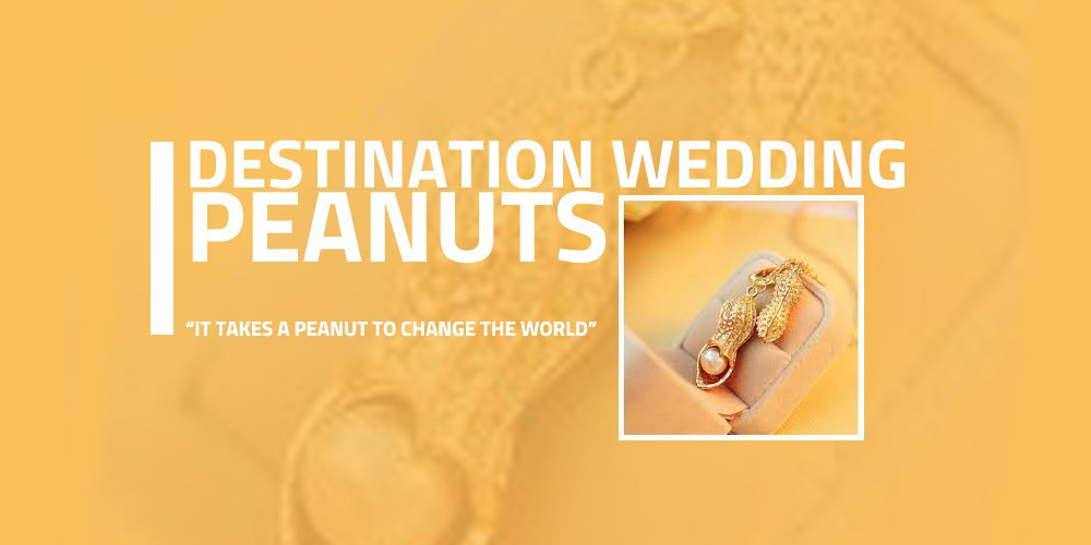 Destination Wedding Peanuts
