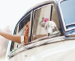 Le spose di Monza 2020, Sartorial è la collezione per donne che amano il fatto a mano