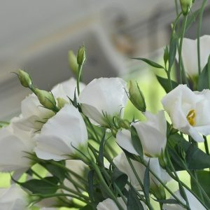 Wedding_Planner_Genova_Federico_Silvestri_01