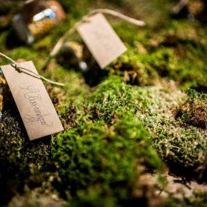 Wedding_Planner_Toscana_Claudia_Venturini_12