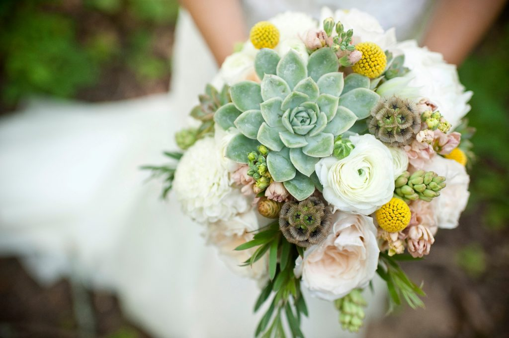 Bouquet piante grasse