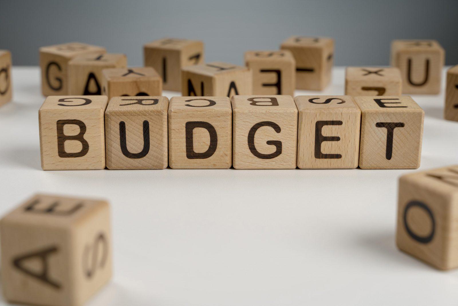 In questa foto delle tessere in legno con su scritta la parola budget