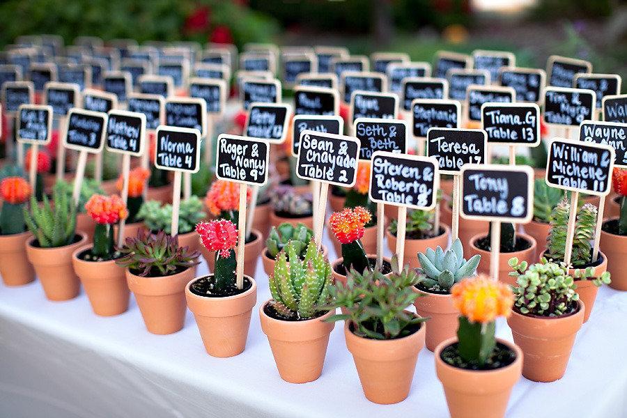 In questa foto un tableau de mariage con piccole piante grasse in vaso. Ad ogni piantina è associato il nome di un ospite