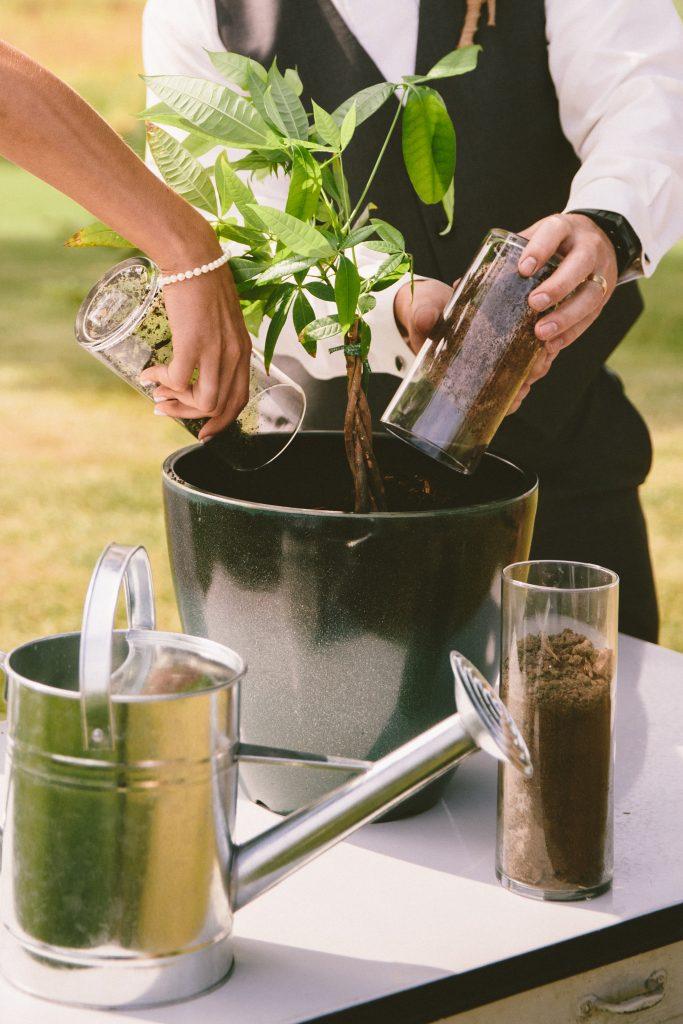 In questa foto il rito simbolico del tree planting per matrimonio civile