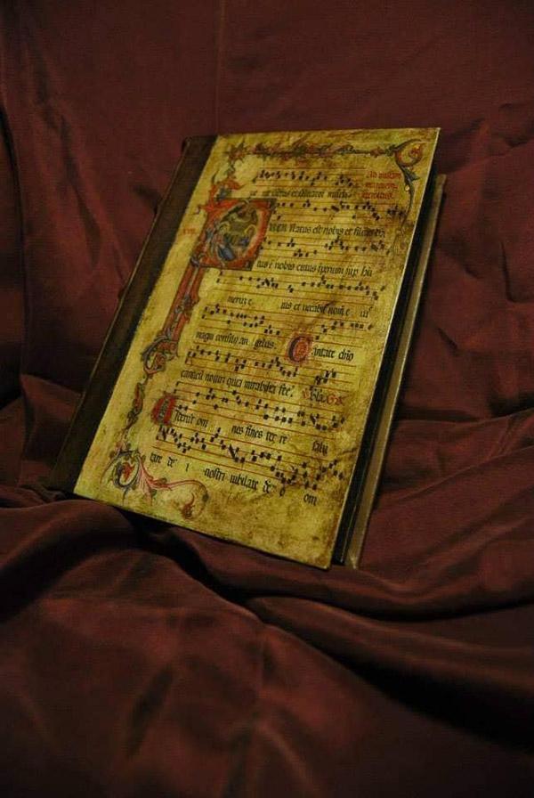 In questa foto un libro in stile medievale