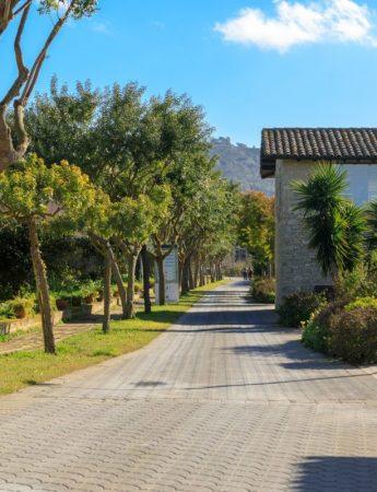 In questa foto uno dei viali alberati di Villa dei Margi