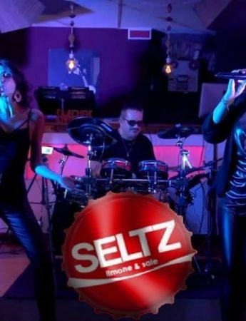 I Seltz, in sestetto, durante un live
