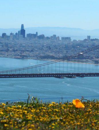 In questa foto un panorama della splendida San Francisco